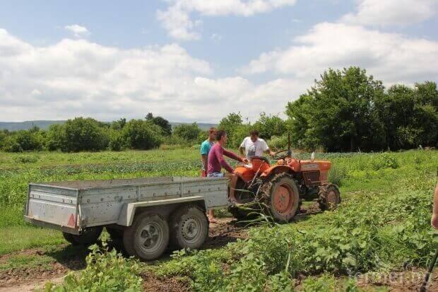 На 15 юни МЗХ ще публикува заповед за отваряне на мярка 6.1 млад фермер
