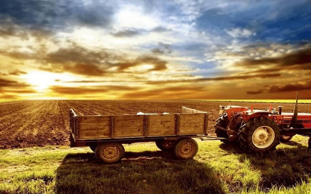 Първият прием за земеделски стопани - стартова помощ за младите фермери